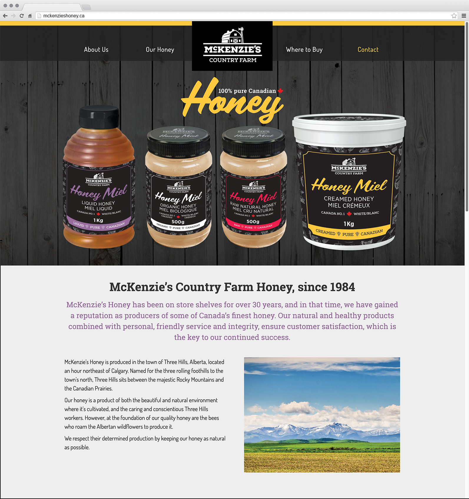 mckenzies-website-with-browser-chrome-medium